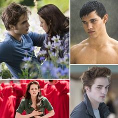 We Retell the Twilight Saga With Pictures From All the movies...this is great!