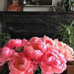 2-sunday-spring-flowers-adamlippes