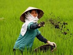 Google Image Result for http://www.pantawee.com/nong_khai_hotel_picture/vietnam7.jpg