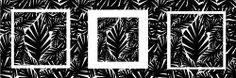 noir,blanc, carrée, contemporaine, déco, moderne,  plante