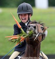 An adorable pony loving life