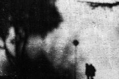shadows by franco maffei