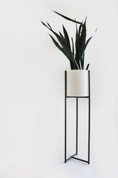 Evie - available at eporta