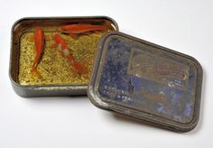 peinture en trois dimensions par Riusuke Fukahori. poissons peints sur différentes strates de résine dans la boite