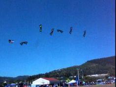 Synchronized kite flying | I Quad trick kite flying