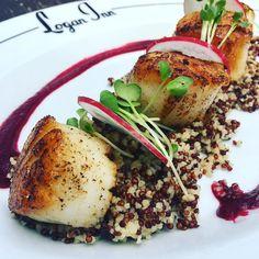 Come join us. red quinoa and couscous honey mustard beet daikon radish Fresh Seafood, Honey Mustard, Scallops, Couscous, Beets, Quinoa, Logan, Pork, Healthy Recipes