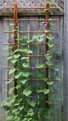 wood and copper, simple and elegant gardentrellis_lead