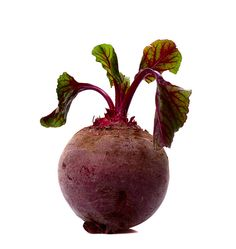 Garden to Table: Beets