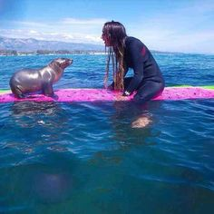 PetsLady's Pick: Funny Baby Sea Lion Of The Day  ... see more at PetsLady.com ... The FUN site for Animal Lovers