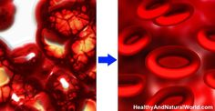 See what happens to your blood when you consume these amazing foods & herbs.
