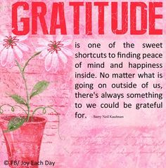 Gratitude is one of the sweet shortcuts to finding peace of mind and happiness inside. No matter what is going on outside of us, there's always something to we could be grateful for.