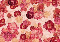 Your Wallpaper - Lisa Bengtsson - Ma fleur - La vie en red rose