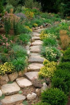 A true rock pathway is supported by a true rock garden complete with grasses breaking free of their borders and traffic friendly ground covers. Many of these choices are also drought friendly to ensure long lasting color through the growing season.