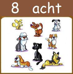 * Tellen met dieren! 8-10