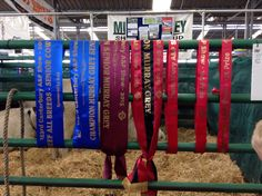 All my ribbons
