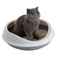 Savic Katzentoilette Figaro, superniedriger einstieg!