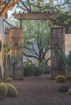 House of Desert Gardens   Paradise Valley, USA   Colwell Shelor Landscape Architecture #desert #garden