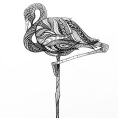 doodle flamingo - Google Search