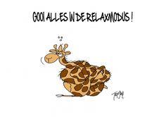 Relaxmodus (© Toon van Driel)