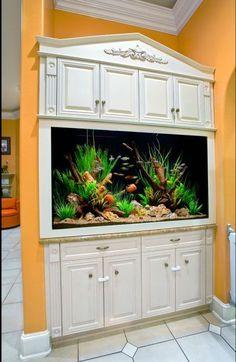 Aquarium #AquariumTanksIdeas