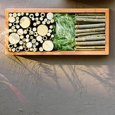 8 stylish bug hotels | Wood pieces & garden clippings | Sunset.com  Along with holes for bees, this frame includes wood pieces and garden clippings to attract beetles and spiders