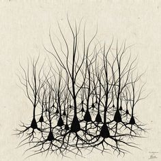 Pyramidal Neuron Forest Art Print by Science Fried Art | Society6
