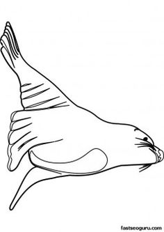 Sea lion pattern. Use the printable outline for crafts
