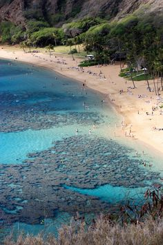 Used to snorkel there with my honey...Hanauma Bay Nature Par, Hawaii