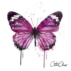 Buy watercolor butterfly 7 - abstract butterfly watercolor p Butterfly Painting, Butterfly Watercolor, Easy Watercolor, Butterfly Art, Watercolor Animals, Watercolor Cards, Watercolour Painting, Painting & Drawing, Butterflies