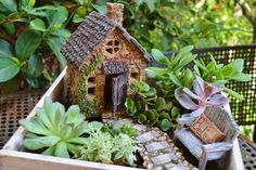 Miniature Garden Cottage in Wooden Planter by BeachCottageBoutique