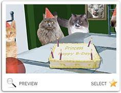 Cat Birthday Russian Blue I Love Cats Chessa Greetings