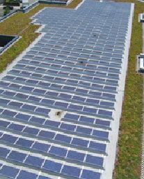 Moen - Green Roofs Are Taking Root No Longer an Afterthought