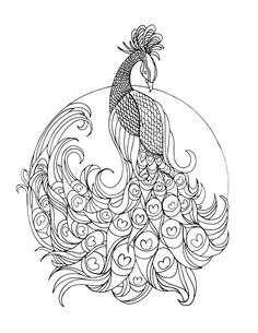 Peacock Coloring Pages Printable - Free Coloring Sheets Peacock Coloring Pages, Animal Coloring Pages, Coloring Pages To Print, Coloring Book Pages, Printable Coloring Pages, Coloring Pages For Kids, Peacock Art, Peacock Colors, Peacock Feathers