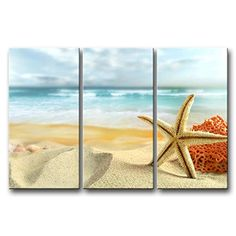 So Crazy Art® 3 Panel Wall Art Painting Starfish And Coral In The Beach Prints On Canvas The Picture Animal Pictures Oil For Home Modern Decoration Print Decor For Bathroom So Crazy Art http://www.amazon.com/dp/B00M93WKKY/ref=cm_sw_r_pi_dp_8GjBwb1G3QD52