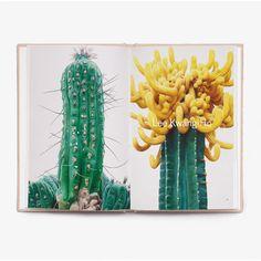 Strange Plants Box Set by Folch Studio