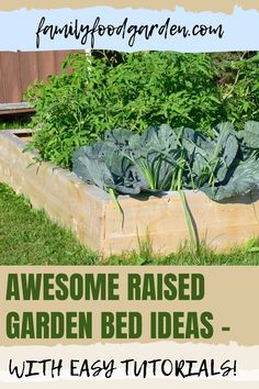 Sharing these awesome raised garden bed ideas that will surely look good on your garden. On this pin, you will find the materials you can use for raised garden beds, lots of inspiration and easy DIY tutorials! Check it out! #gardening #gardeningtips #raisedgardenbeds Container Gardening, Gardening Tips, Indoor Gardening, Raised Garden Bed Plans, Healthy Fruits And Vegetables, Small Trees, Bed Ideas, Growing Plants, Garden Planning