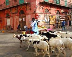 Passing through St. People Around The World, Travel Around The World, Around The Worlds, Out Of Africa, West Africa, Saint Louis Senegal, Senegal Travel, Lake Retba, Senegal Africa
