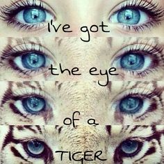 1000+ images about Songs lyrics on Pinterest | Katy perry ...