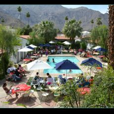 palms single lesbian women Secluded and romantic mountain view hotel surrounded by fruit trees and flowers everywhere catering to lesbians in palm springs for over ten years.