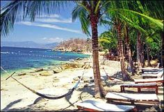 "Las Caletas, Puerta Vallarta ~ great place! Fed deer out of our hands, parrots, snorkeling. Fun boat ride back with music from ""Grease""."