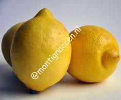 Drink elke ochtend een glas lauwwater met wat uitgeperste citroen APPELAZIJN Gebruik appelazijn in kleine hoeveelheden. Je kunt het gebruiken als saladedressing. Appelazijn is een sterk vochtafdrijvend middel omdat het gemaakt is van appels en de fruitzuren van appels creëert een vetverbrandend proces. Het bevat ook veel potassium dat helpt om de vetopname te verlagen. ... Lees verder...
