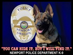 Newport K-9 - You Can Hide It, But I Will Find It