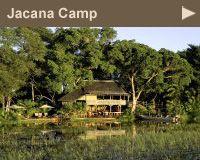 Botswana Safari Camps and Safari Lodges  Luxury Safari Lodges and Camps in Botswana