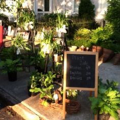Yard sale plant sale in German Village