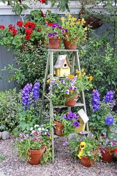 Use the ladder as a trellis for climbing vines in the kitchen garden and fill in the holes with birdhouses and potted flowers and herbs.