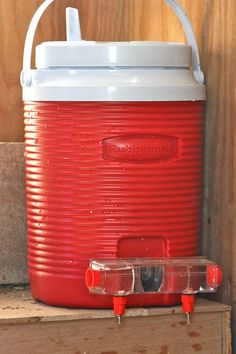 I so want a Brite Tap Chicken Waterer. Perhaps the insulated water cooler will help keep not only cool during the summer but warm (aka not frozen solid) during the winter? Best Egg Laying Chickens, Keeping Chickens, Raising Chickens, Chicken Pen, Small Chicken, Chicken Ideas, Chickens In The Winter, Materiel Camping, Building A Chicken Coop