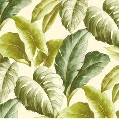 Råhvid med grønne palmeblade - Køb tapet med palme blade