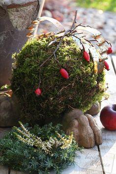Früchte, Samen, Moos... *November im Garten* - Gartendekoration November