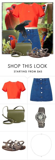 """""""Crimson rosella"""" by pusja76 ❤ liked on Polyvore featuring Nicole Miller, Miss Selfridge, Tory Burch, Bertha, Mephisto and Sole Society"""