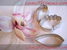 Орхидея,orchid,orchidej,Orchidee,orchidea,o rquídea - Мастер-классы по украшению тортов Cake Decorating Tutorials (How To's) Tortas Paso a Paso